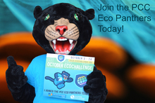 Team PCC Eco Panthers's avatar